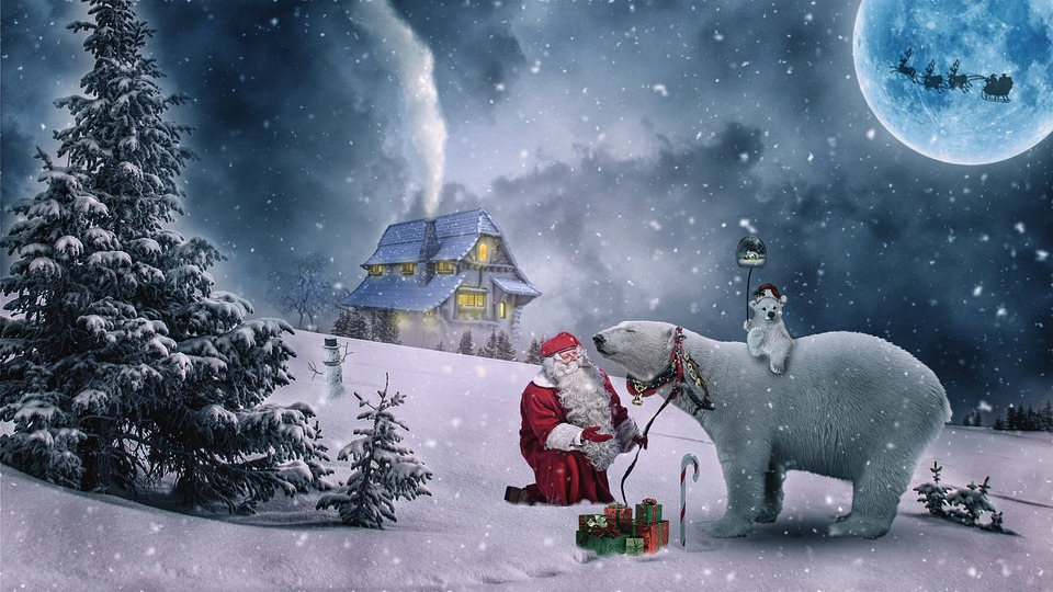 Merry Christmas From Nelsonecom